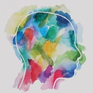 artistic painting of a head image with many colors