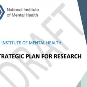 NIH strategic plan