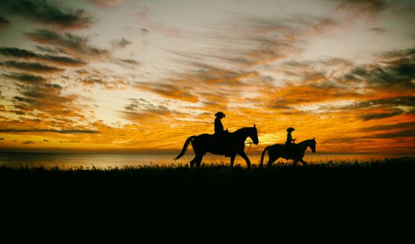 A silhouette of two people each riding horses with a sunset behind them