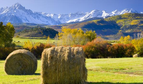 A picture of two hay bales sitting in a field, behind which are trees, hills and mountains