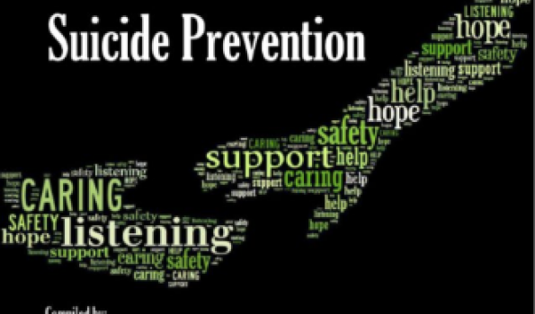 Screenshot of Toolkit for Mental Health Promotion and Suicide Prevention