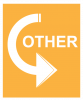 An orange colored background with a white arrow rotating around with the word Other in the middle